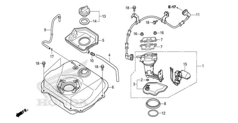 moto th - honda zoomer-x  2014  parts
